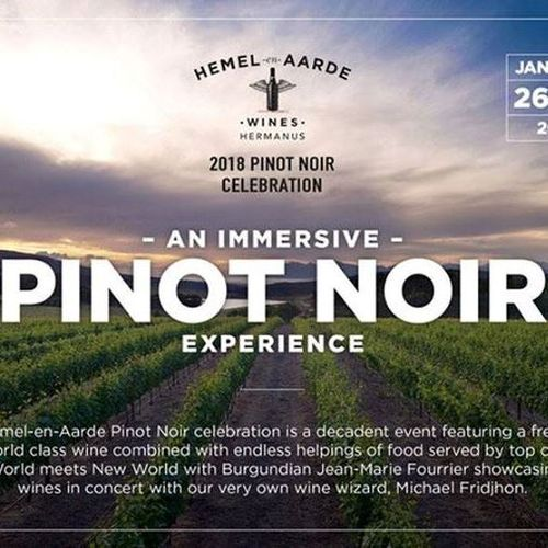 Pinot Noir Celebración en Sudáfrica